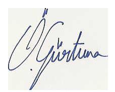 ozgur signature